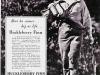 Huckleberry Finn (1939)